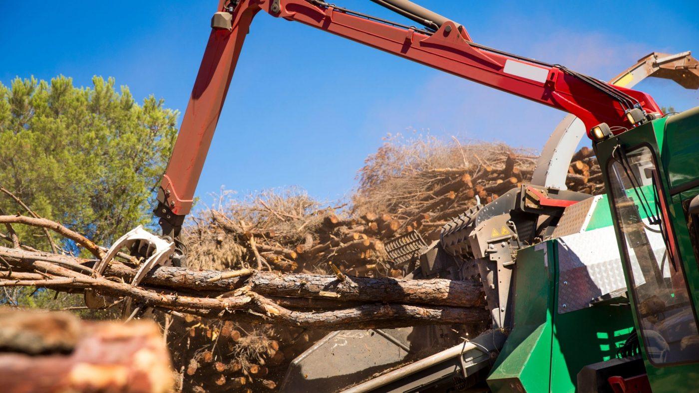 Biomass Blades
